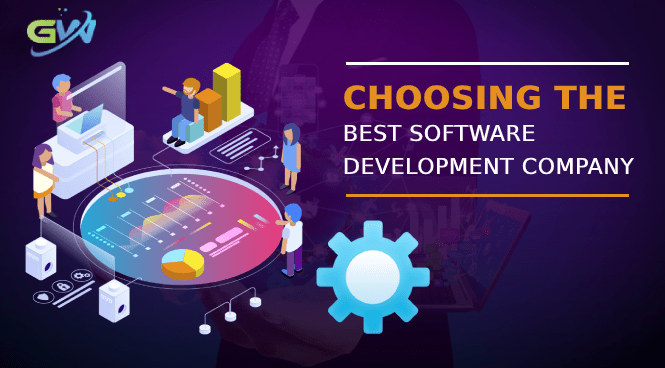 choosing the best software development company